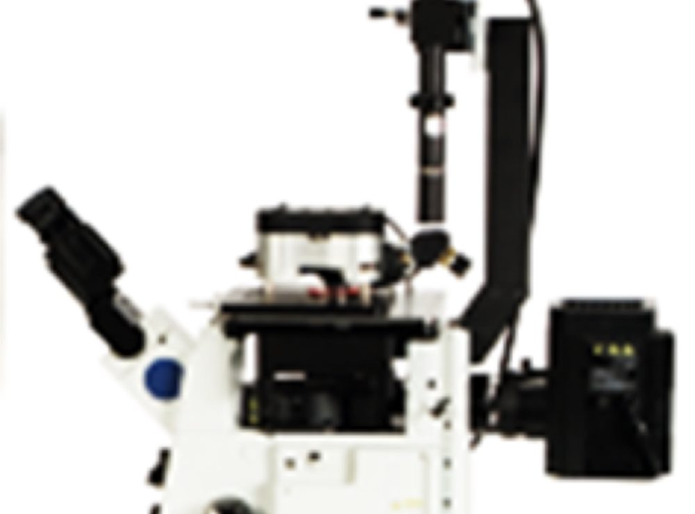 Nanoscale Magnetic and Thermal Imaging System
